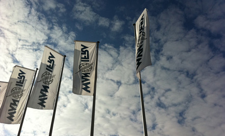 WAN-IFRA flags