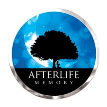 Afterlife Memory